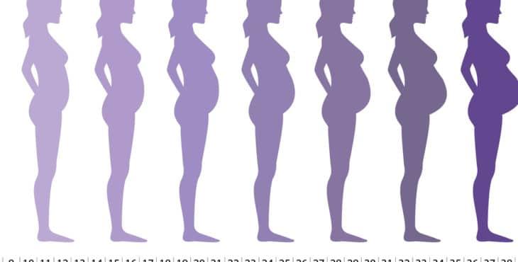 Cambios en la madre durante el embarazo