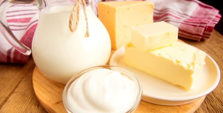 Leche y otros derivados lácteos