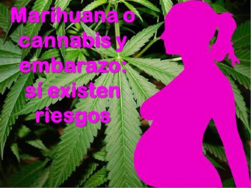 Embarazo y marihuana