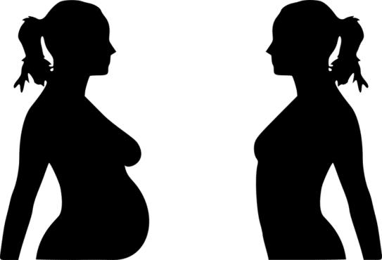 Madre y su feto